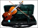 ESTUCHES RECTANGULARES PARA VIOLIN