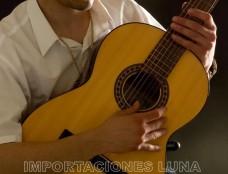 curso de guitarra acustica para principiantes
