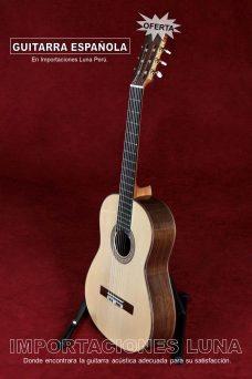 guitarra española profesional